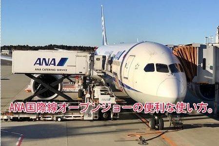 ANA特典航空券が取れない!空きがない!そんな時、オープンジョーなら取れるかも。