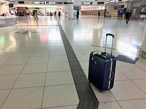 東京から名古屋へ。新幹線と飛行機はどっちがおすすめ?安さ便利さを比較