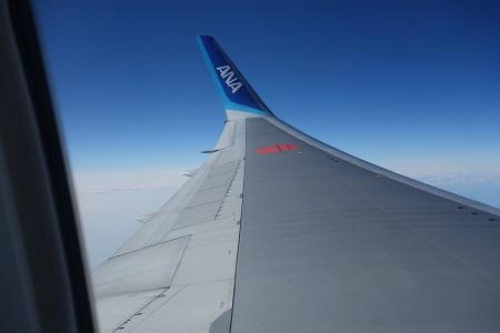 ANA機内から見たウイング