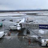 空港で滑走路が凍っている