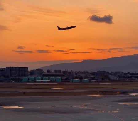 伊丹空港で見た飛行機