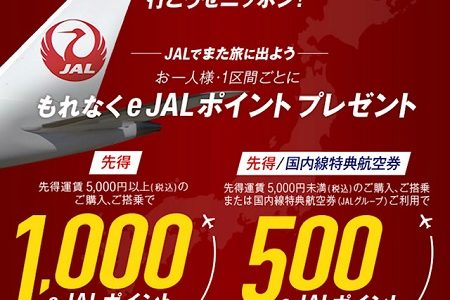 【変更点あり】JAL国内線搭乗キャンペーンが強烈!1区間で1,000ポイント!