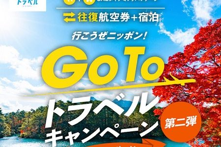 JALツアーとGo Toのコラボがおすすめ!航空券がこんなに安くなる。
